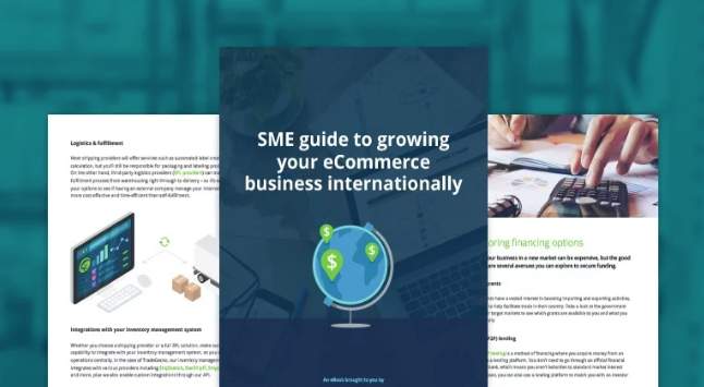 Guide to international sme expansion