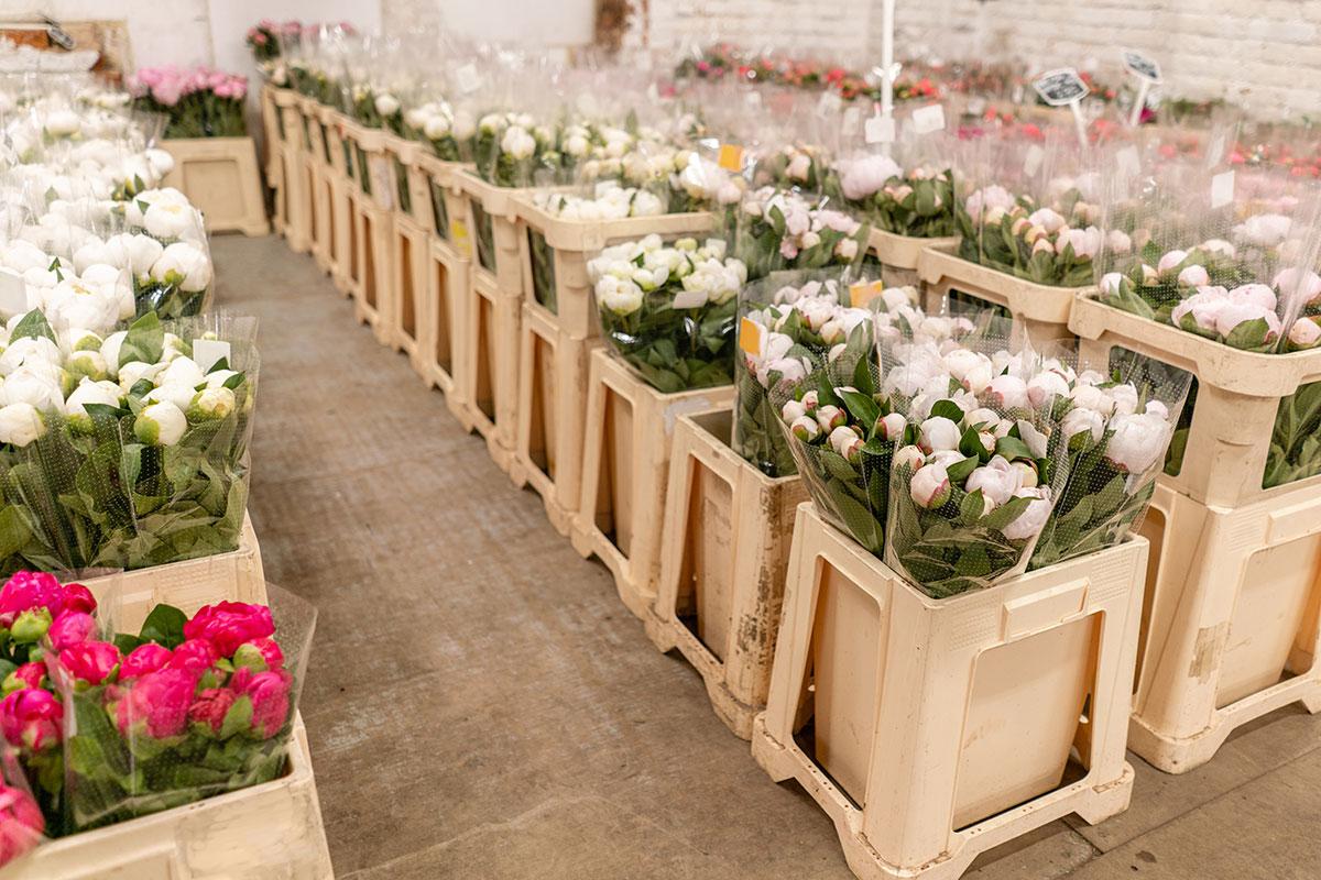 tradegecko_findwholesale_supplier_flowercrate