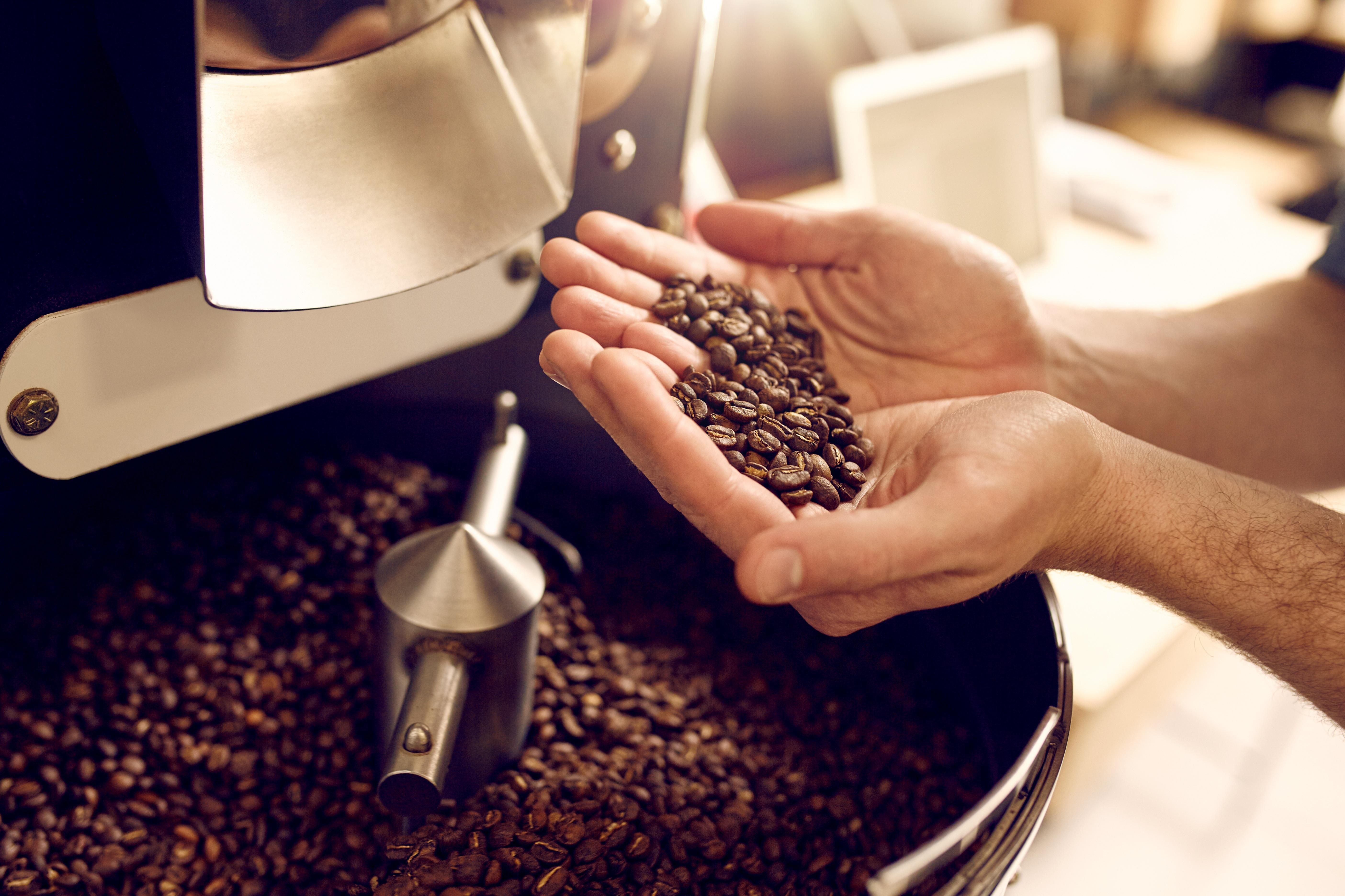 coffee in hands.jpg