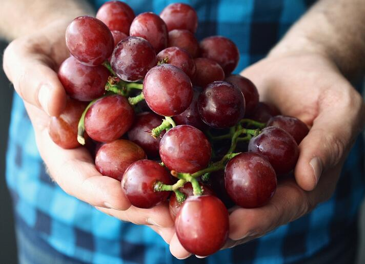 local community produce grapes