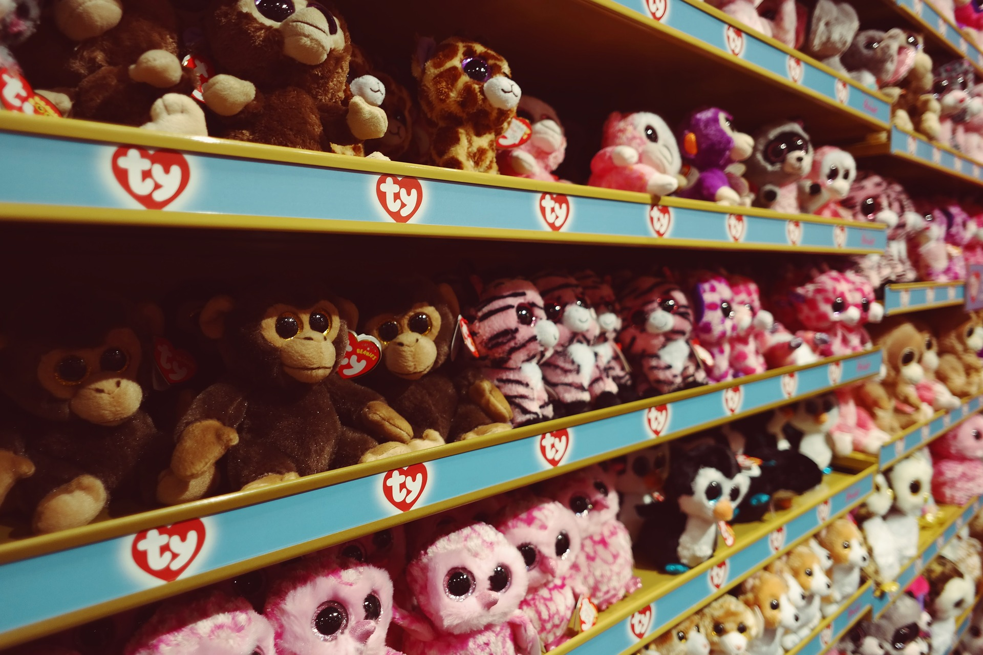 full and chunky toy retailers