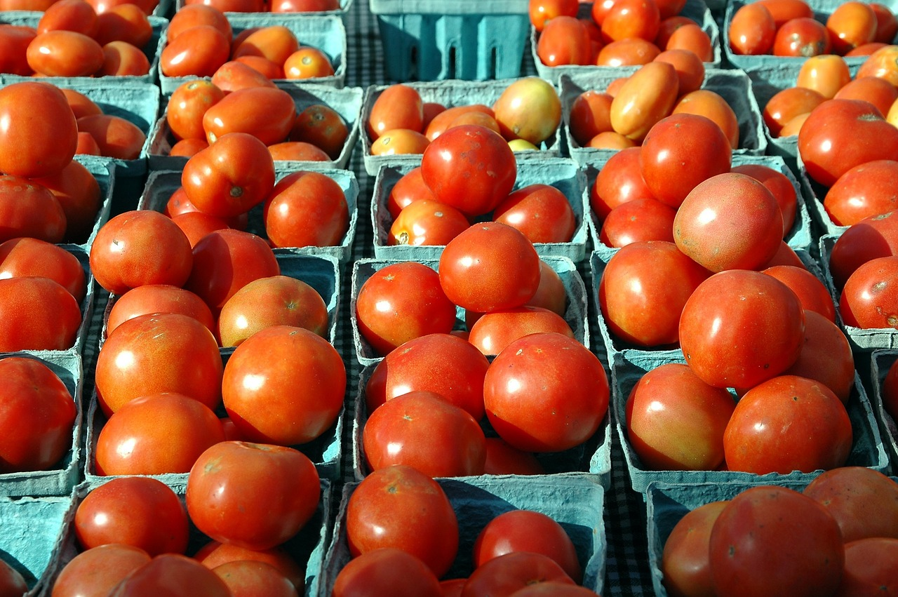 Boxes of Tomatoes
