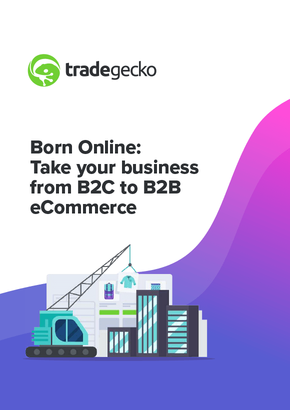 born-online-take-your-business-b2c-to-b2b