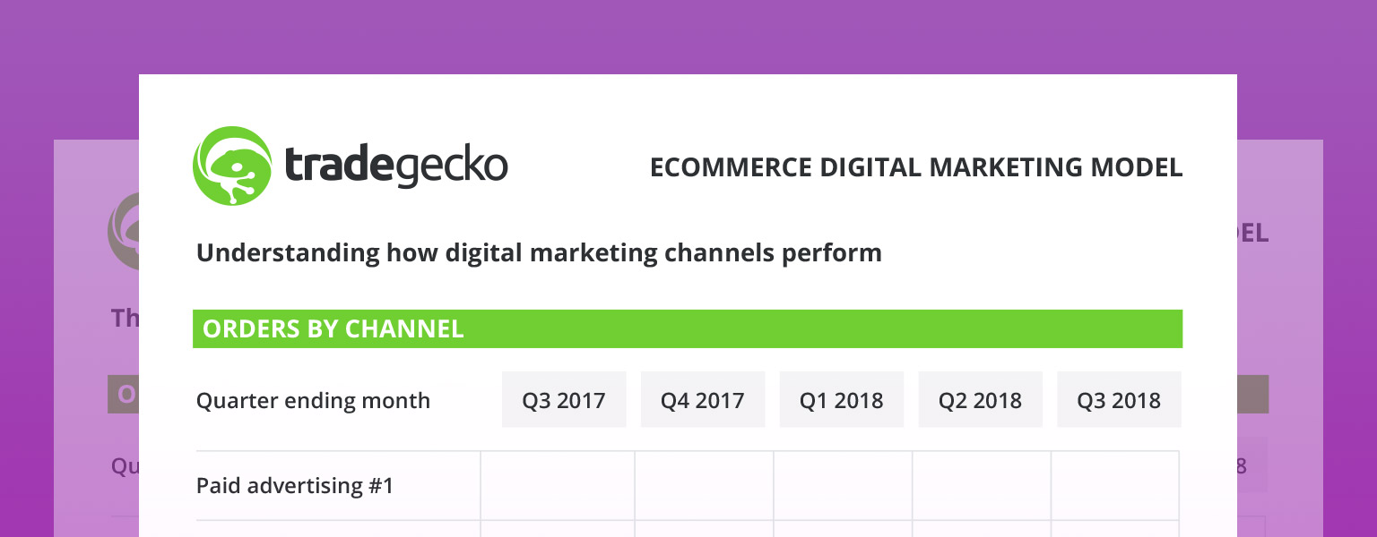 eCommerce Digital Marketing Model