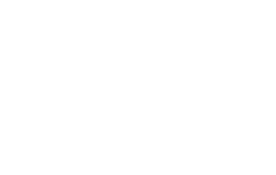 Multiple Shopify stores