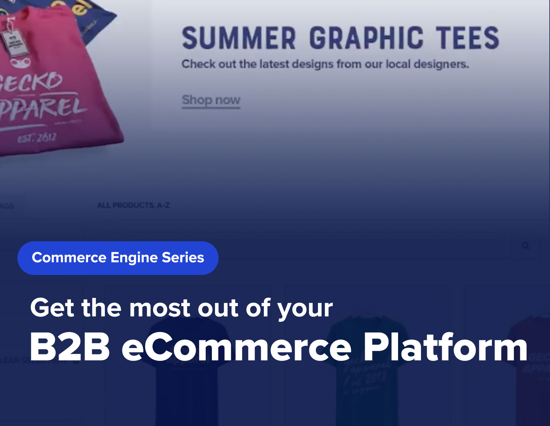 Get the most out of your B2B eCommerce